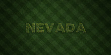 NEVADA - Fresh Grass Letters With Flowers And Dandelions - 3D Rendered Royalty Free Stock Image. Can Be Used For Online Banner Ads And Direct Mailers..