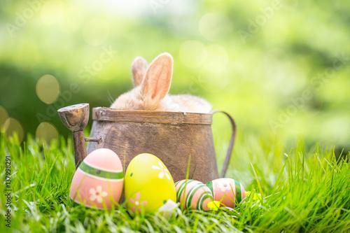 Plakat Natura kartka Wielkanoc zielona