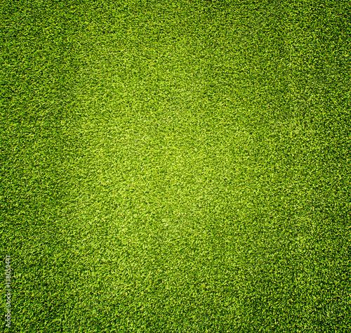 grass Wallpaper Mural