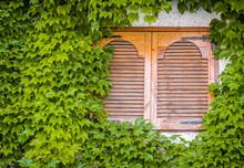 Wooden Shutters On The Window