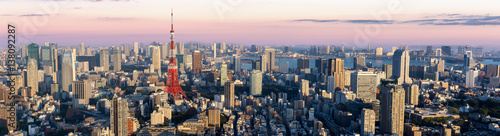 Photo  Panorama view of Tokyo city at dusk time , Japan