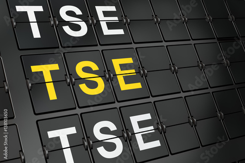 Fényképezés  Stock market indexes concept: TSE on airport board background