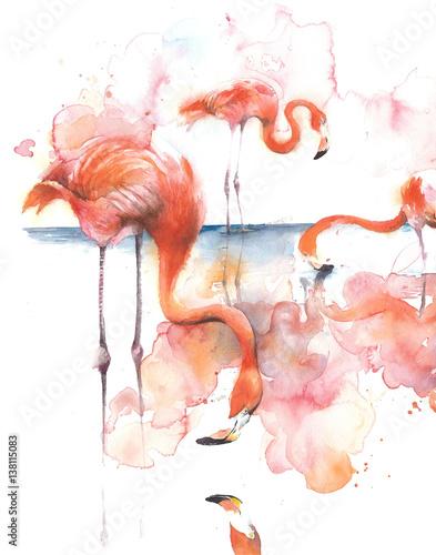 flaming-na-jeziornym-lasowanie-rozowym-ptasim-ptaku-afryka-akwareli-ilustracja-odizolowywajaca-na-bialym-tle