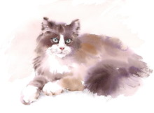 Watercolor Cat Laying Down Hand Drawn Pet Portrait Illustration
