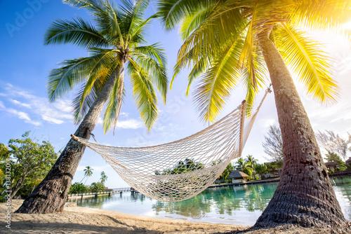 Fotografie, Obraz  Entspannen in der Hängematte am Strand