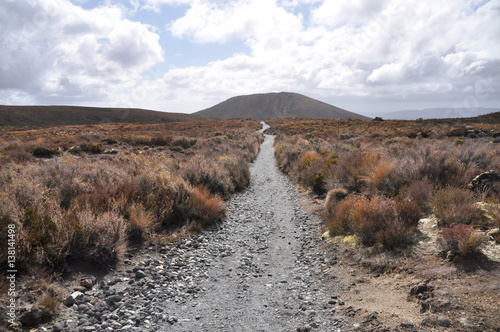 Photo  Mordor path at Mount Doom (Mount Ngaunuhoe) Walkway at Tongariro Alpine Crossing
