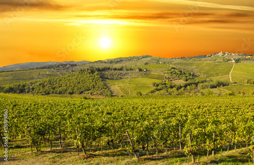 Papiers peints Vignoble Tuscany vineyards in Chianti region, Italy