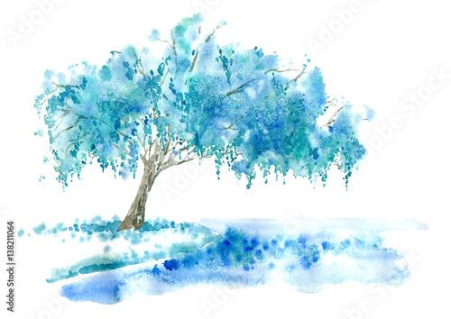 Wierzba płacząca nad jeziorem. Niebieskie drzewo. Dłoń akwarela ilustracja.