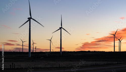 Poster Texas Texas Windmills