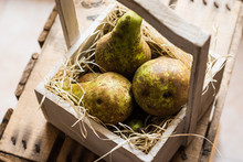Top View Of Heap Of Ripe Organic Conference Pears On Straw In Aged Wood Box, Local Produce, Kinfolk