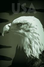 USA Military Supremacy. Poster...