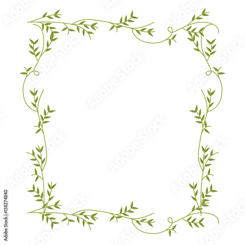Foto frame with green creepers nature design vector illustration