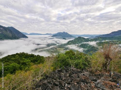 Photo sur Toile Jungle Forest tropical foggy mountain hill landscape