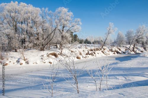 Keuken foto achterwand Bossen winter frost