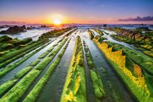 Seaweed To Infinite At Barrika Beach, Spain
