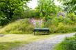 Långholmen är som en stor park med sina stora härliga ekar, amfiteater och natursköna stigar runt hela ön (8 av 35)