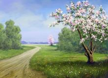 Spring, Landscape, Road, Flowers