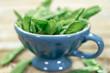 canvas print picture - Zuckerschoten mit rustikalem Hintergrund und blauer Tasse