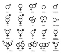 Vector Outlines Icons Of Gender Symbols