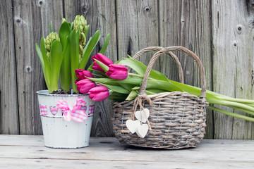 Hyazinthe mit Tulpen im Weidenkorb vor Holzhintergrund
