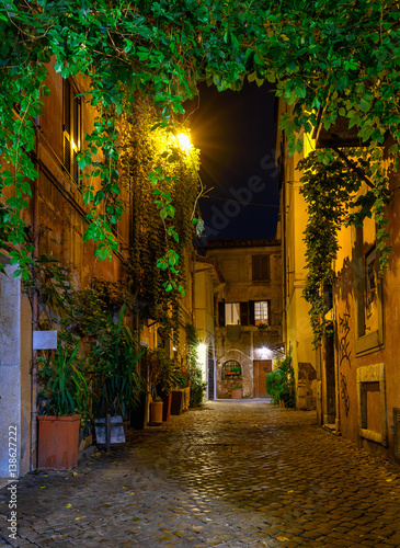 Night view of old cozy street in Trastevere in Rome, Italy © Ekaterina Belova
