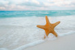 red starfish in sea wave with sky and seascape