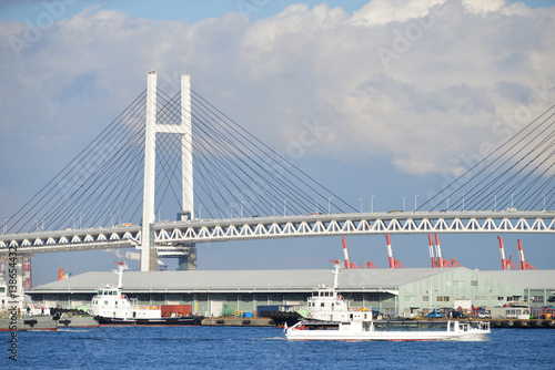 Staande foto Rotterdam ship