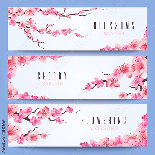 wedding banners template with spring japan sakura cherry blossom