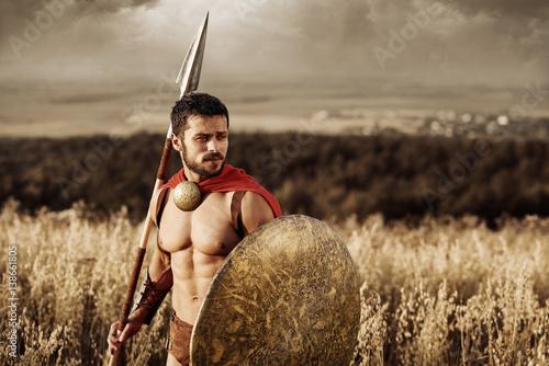 Fényképezés  Muscular medieval warrior standing in the field