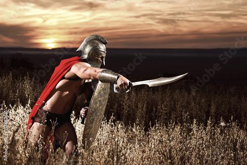 nieustraszony-mlody-spartanski-wojownik-pozuje-w-polu