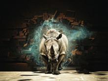 Rhino Destroy Brick Wall 3d Re...