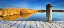 Stiller See Mit Schilf Im Morgenlicht, Holzsteg Mit Raureif Bedeckt