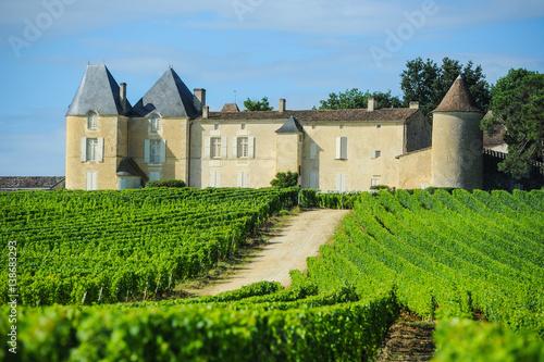 Photo Vineyard and Chateau d'Yquem, Sauternes Region, Aquitaine, Franc