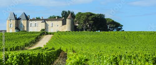 Vineyard and Chateau d'Yquem, Sauternes Region, Aquitaine, France Wallpaper Mural