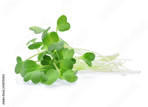 Photo heap of alfalfa sprouts isolated on white background