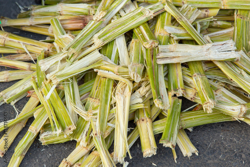 Photo Sugarcane bagasse, nature fiber recycle for biofuel pulp and building materials
