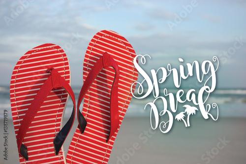 Fotografia, Obraz  Spring break flip flops on the beach
