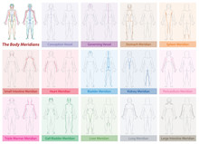 Body Meridian Chart Of A Woman...