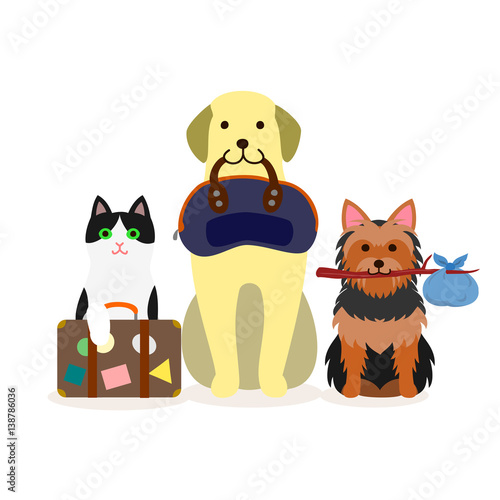 Wall Murals Bears Small group of dogs and cat with travel bag