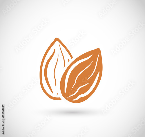 Almond icon vector Canvas Print