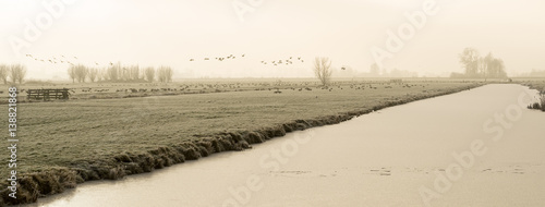 Slika na platnu Frozen polder landscape with a ditch in The Netherlands