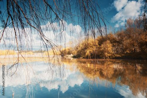 Fotografie, Obraz  Park of Pateira Fermentelos,Aveiro,Europa, Portugal.