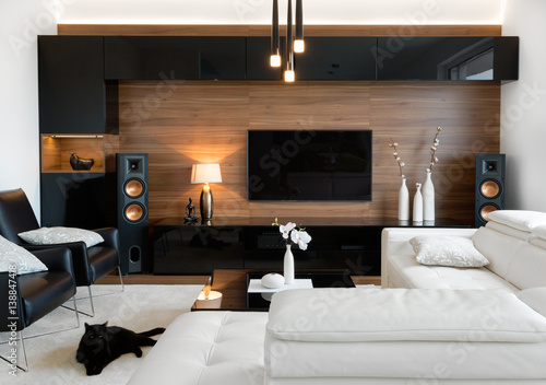 Modern living room with stereo speakers Canvas Print