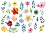 Fototapeta Kwiaty - Watercolor floral elements set
