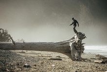 Man Standing On Top Of Dead Tree Trunk On Beach