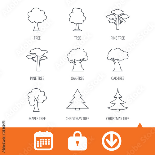 Christmas Arrow Signs.Pine Tree Maple And Oak Icons Christmas Trees Linear Signs