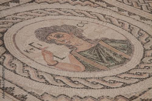 Foto op Plexiglas Cyprus Mosaic floors of Roman villas