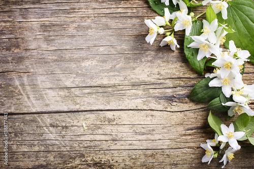 Obraz na plátně Jasmine flower on wooden background