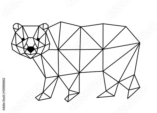 Fotografering polygonal fox