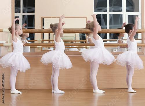 Group of beautiful little girls practicing ballet at class Wallpaper Mural